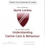 CIDBT certificate