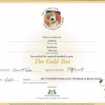 The Kennel Club Good Citizen Dog Scheme Gold Award