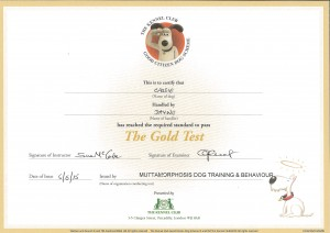 Kennel Club Gold Good Citizen Award